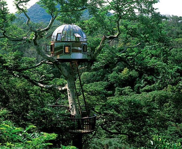 One of the best treehouses ever