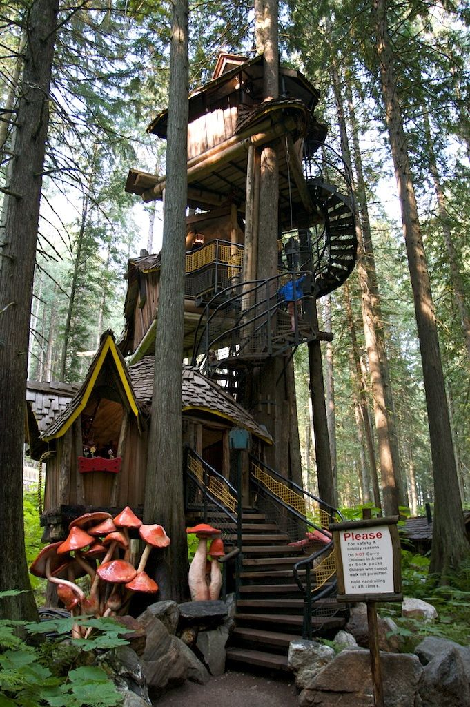 Picture of: These Are The Best Treehouses Around The World