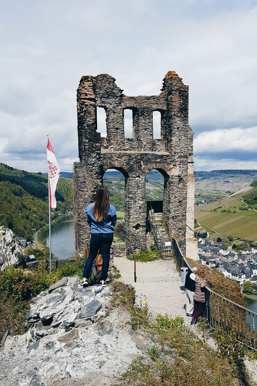 View over the Moselle River
