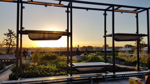 restaurant bureau amsterdam 39 s hidden rooftop wander lust