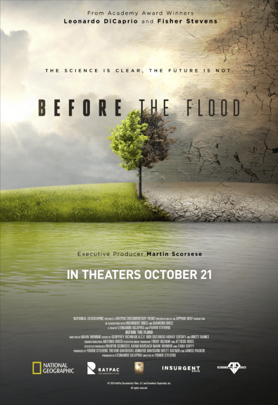Before The Flood Screening