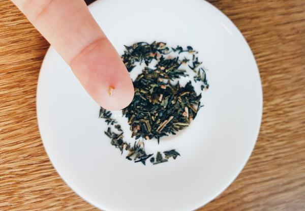 Tea Tasting at V-Bar Amsterdam