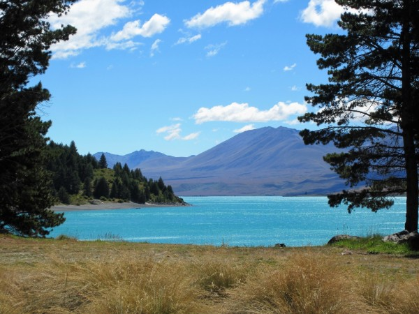 New Zealand travel movies