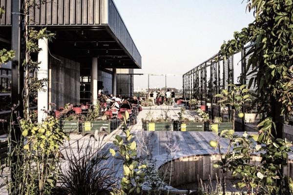 15 x Best Terraces In Amsterdam West