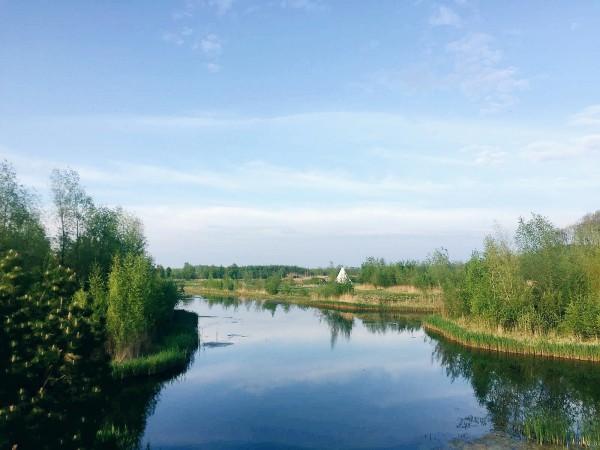 Nature in Flevoland