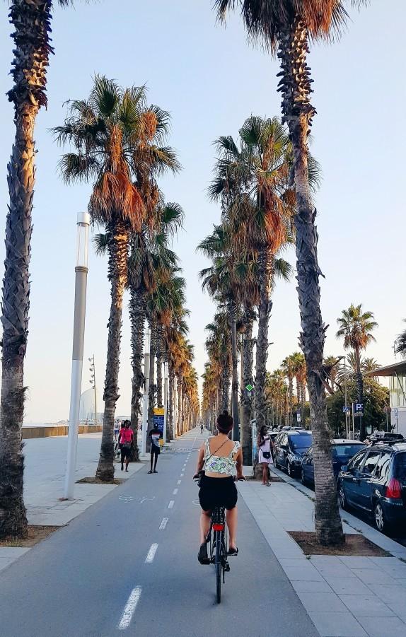 Cycling in Barcelona, Wanderlust Barcelona Guide