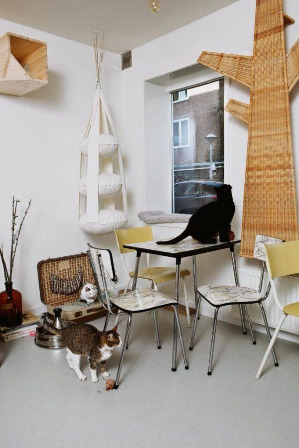 kattencafe Amsterdam
