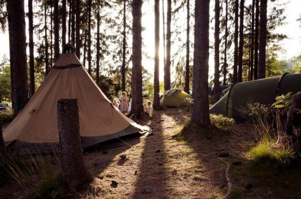 Schwarzwaldcamp Black Forest