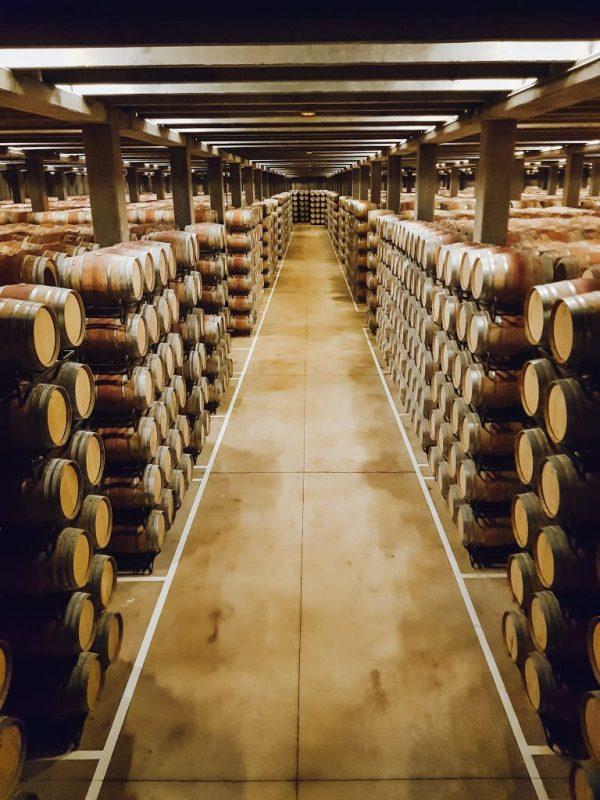 Campo Viejo Wine barrels