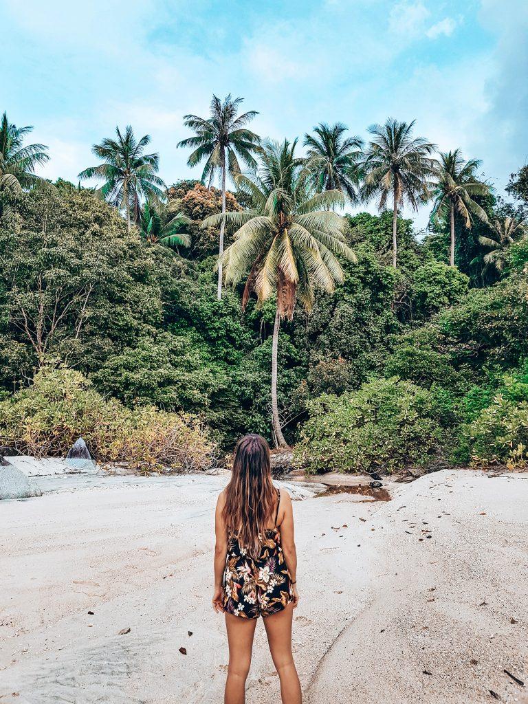 palmtrees on Koh Adang