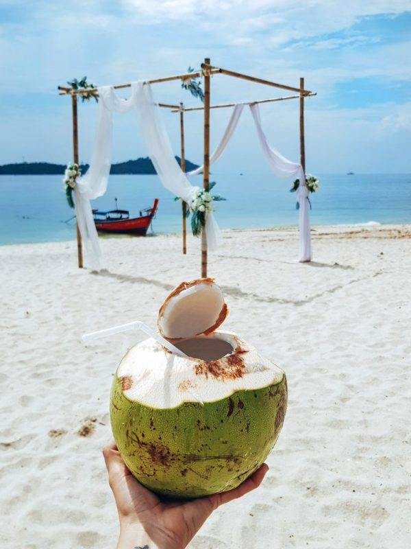coconut at Koh Adang resort