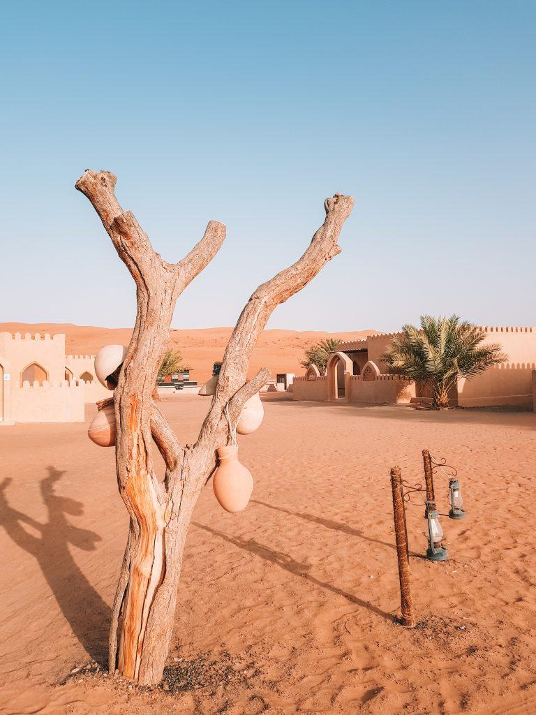 Oryx Arabian camp