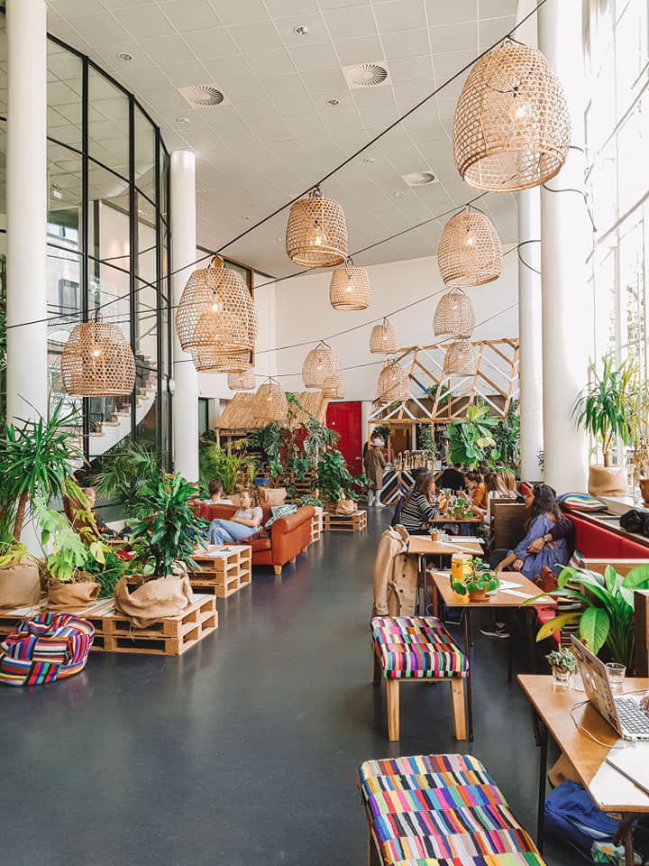 Karibu Cafe Utrecht