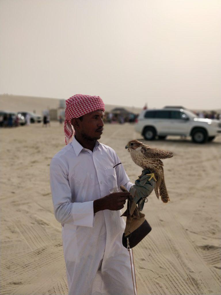 Doha Falcon