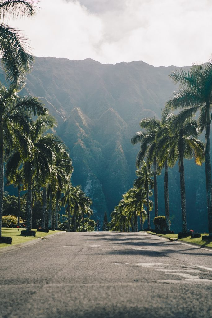 Hawaii | travel movies