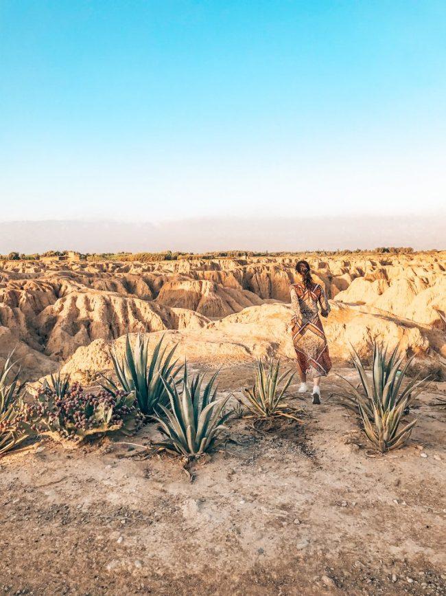 Taroudant region Morocco