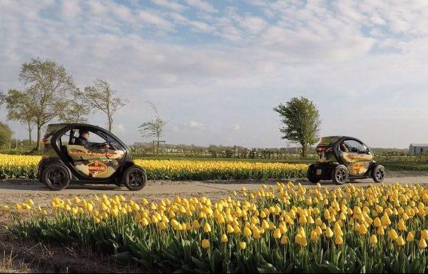 Renzy Tulip Tour Netherlands