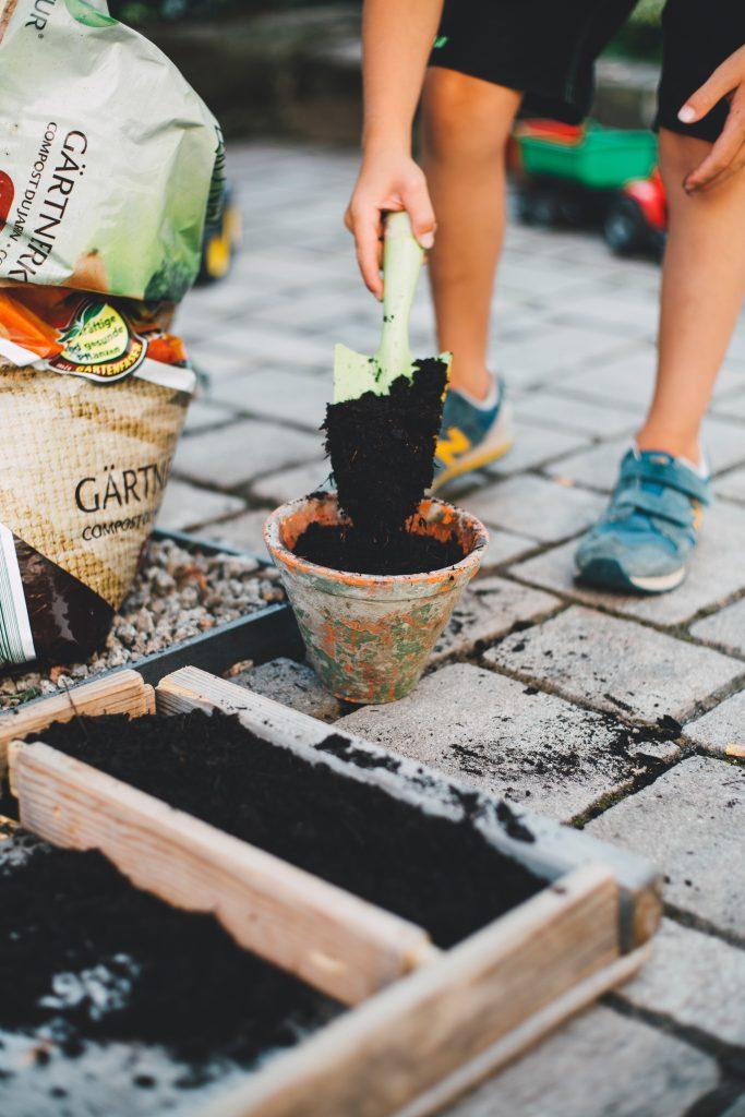 Hobbies, gardening
