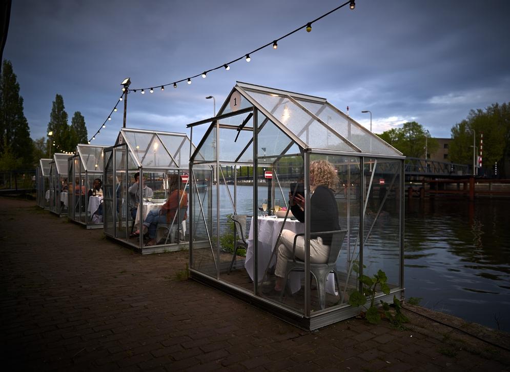 Dinner in greenhouse Amsterdam