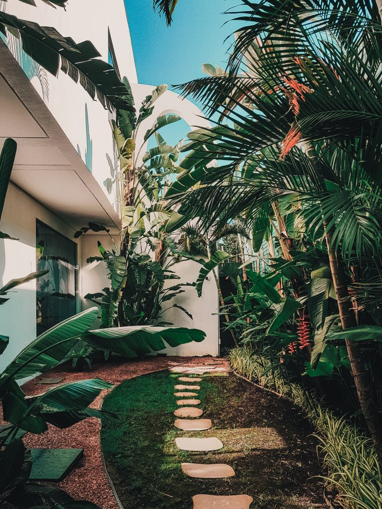 Garden and balcony trends, tropical