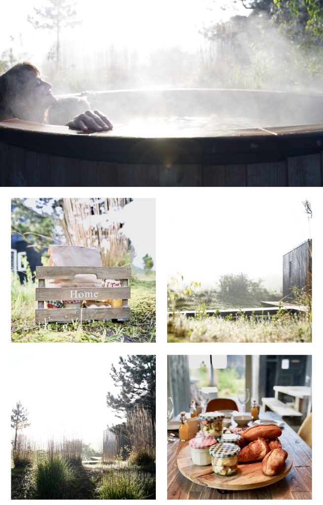 De vier Eieken collage