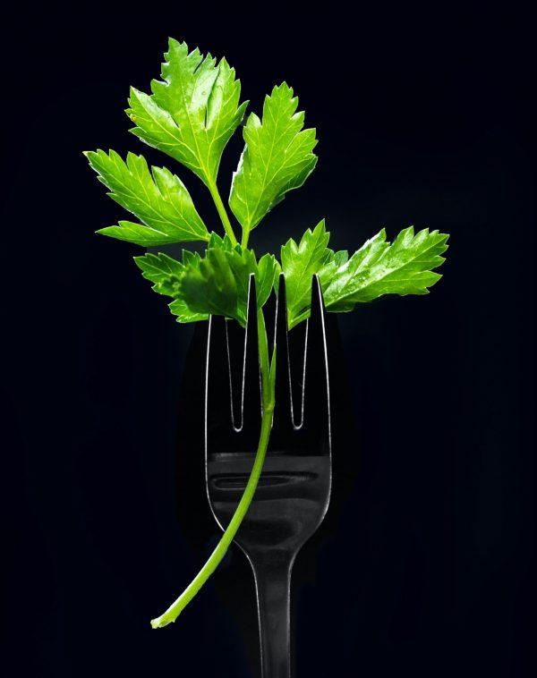 Best plant based restaurants in the world