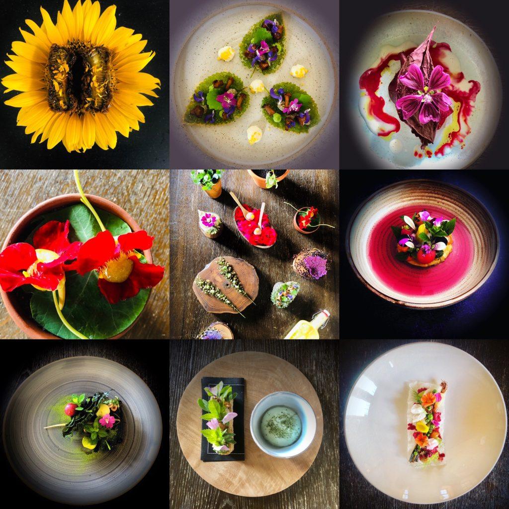 La Distillerie best plant based restaurant